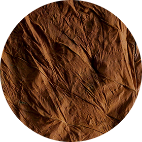 San Vincente Leaf